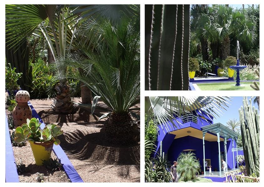 maroc jardin