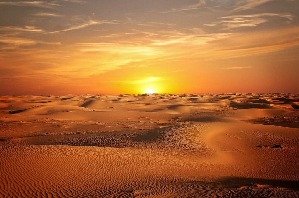desert orient