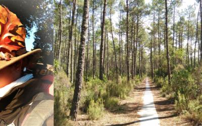 Marie ou la randonnée solitaire : 700km à pied, sa tente et son chapeau.