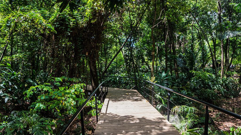 le jardin botanique de Medellin