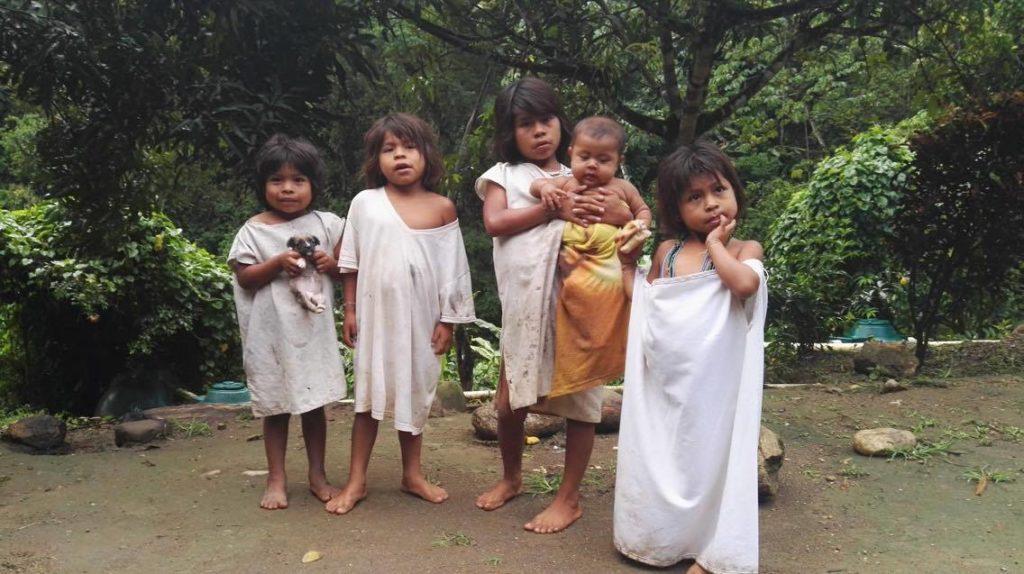 enfants indigènes sierra nevada colombie