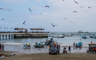 Carnet n°17 – Puerto Lopez : Baleines, quiétude et bonne bouffe