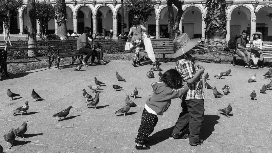 enfants-pigeons_NB