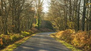 route Limousin automne