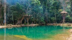 blue lagoon bis
