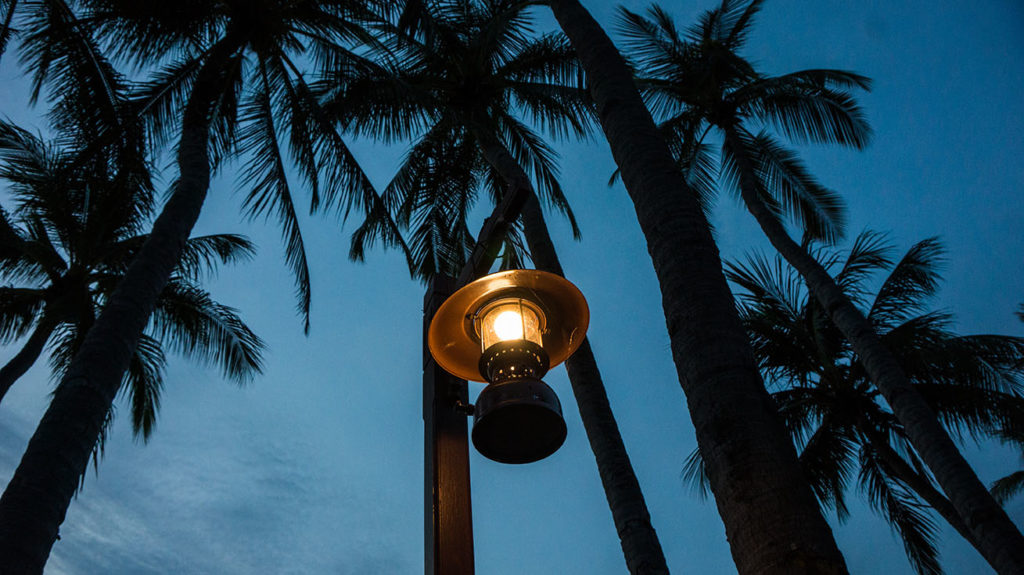 lampions palmiers sur langkawi