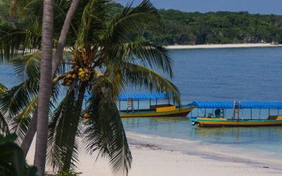 Plonger à Sulawesi : Bira, hors des sentiers battus