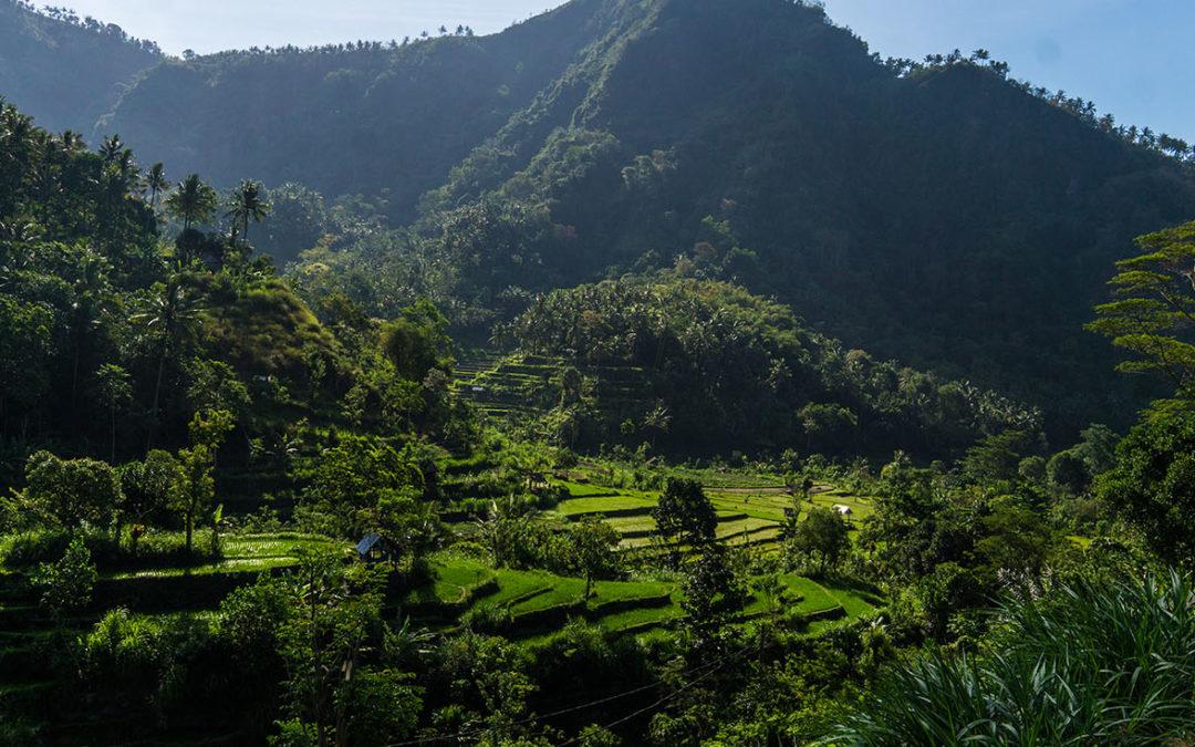 Bali ou Malaisie, quelle destination choisir?