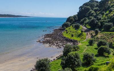 Road Trip en Nouvelle Zélande – la Bay of Plenty : vers luisants, Hobbits et géothermie