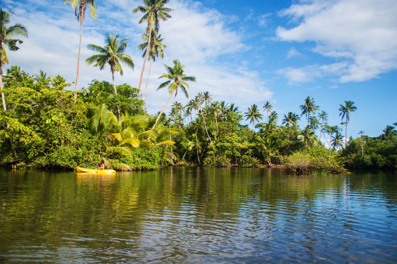 canoe-mangrove-10