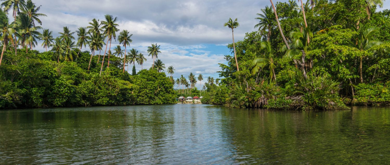 canoe-mangrove-6-HD