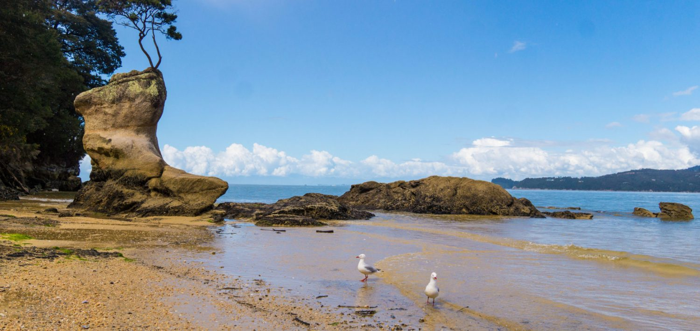 plage-abel-tasman-2-HD
