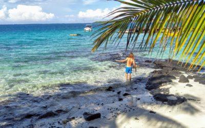 Carnet n°61 – Savai'i, la grande île de Samoa